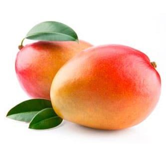 Mangoes Fruits