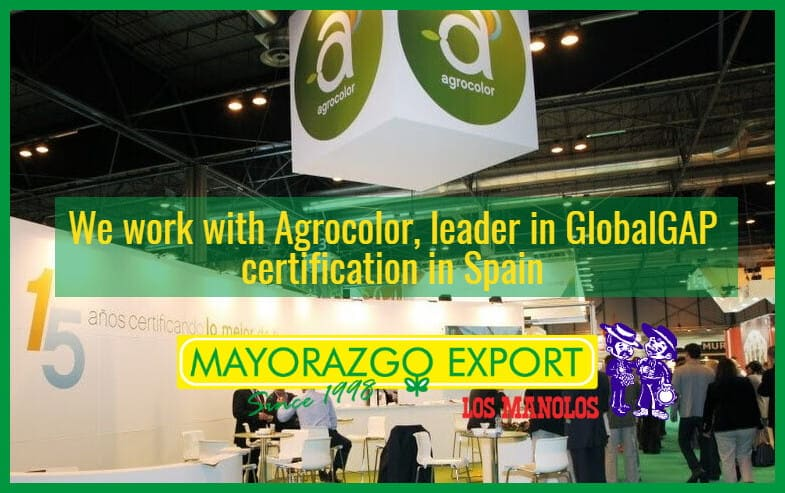 Mayorazgo Export works with Agrocolor, GlobalGAP certifications leader in Spain